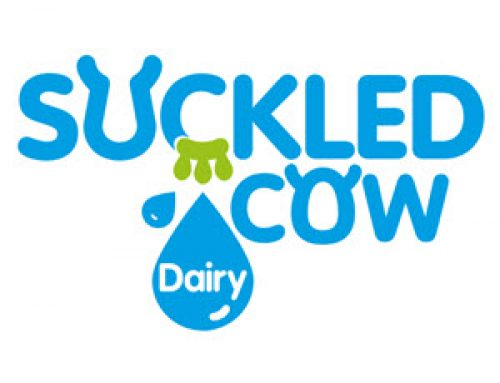 Suckled Cow Dairy